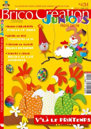 Brico Juniors n°42