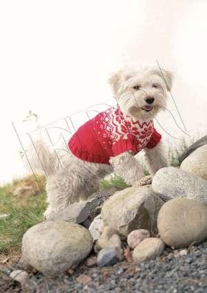crochet pull noel pour chien