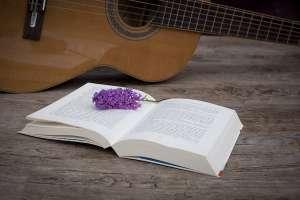 guitare livre éducation